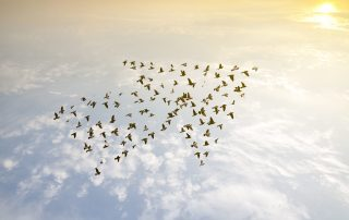 Leadgenerierung © fotolia / Love the wind